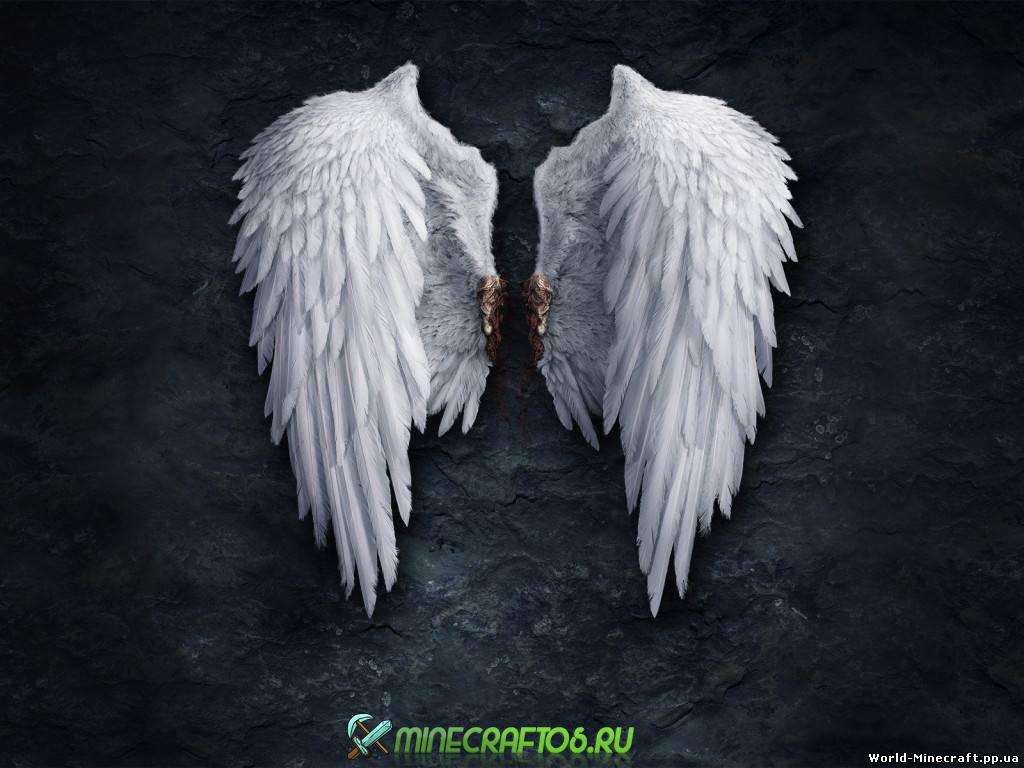 Как качать крылья отжиманиями - 7484